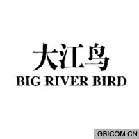 大江鸟  BIGRIVERBIRD